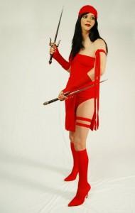 Elektra Halloween Costume