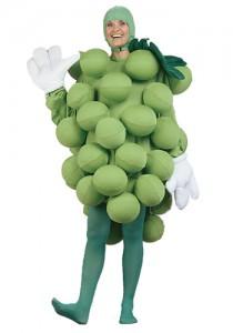 Adult Food Costume