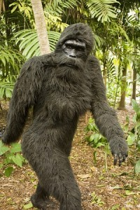 Bigfoot Costume Pattern