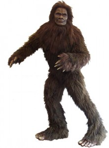 Bigfoot Costume Pictures