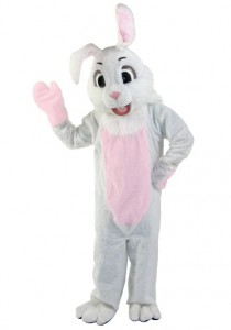 Bunny Rabbit Costumes