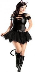 Catwoman Costume Plus Size