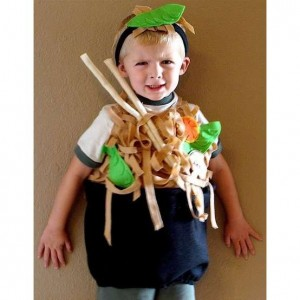 Chinese Food Costume