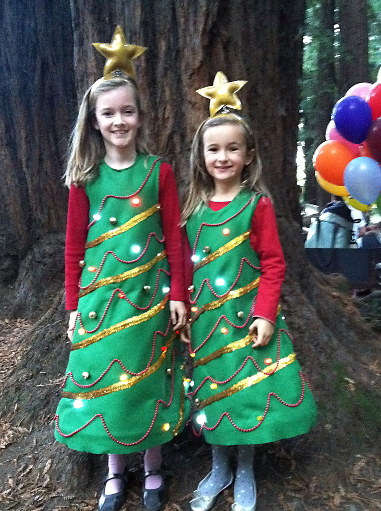 Christmas tree costumes for men women kids parties costume christmas tree costume ideas solutioingenieria Image collections