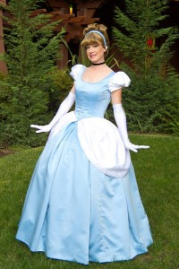 Cinderella Costume Ideas