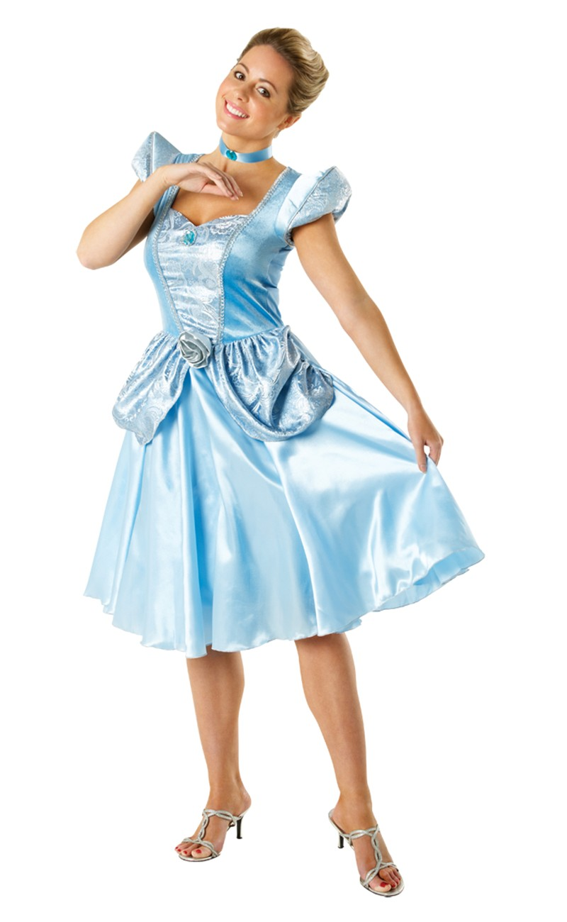 Princess costume disney adult