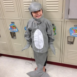 Dolphin Costume Ideas