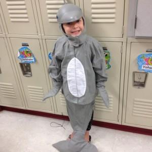 Dolphin Costume Ideas