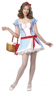 Dorothy the Wizard of Oz Costume
