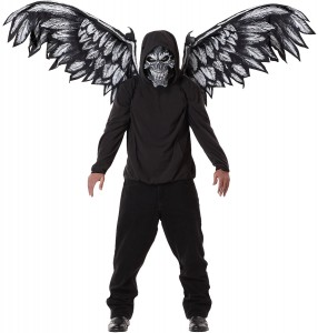 Fallen Angel Wings Costume