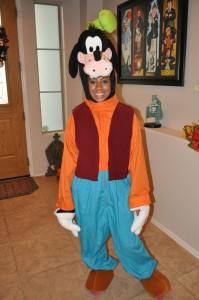 Goofy Costumes