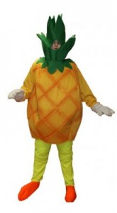 Pineapple Costume for Men