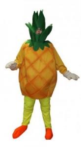 Pineapple Costume for Men