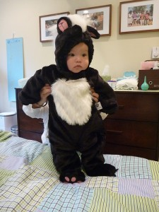Skunk Costume for Baby