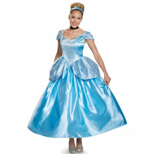 Womens Cinderella Costume
