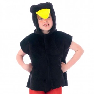 Black Bird Costume