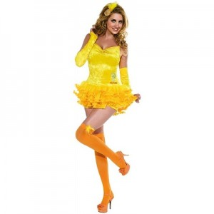 Womens Big Bird Costume
