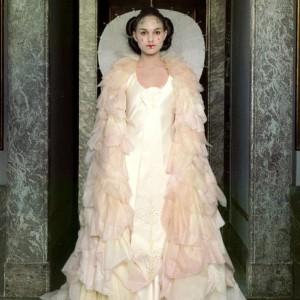Adult Queen Amidala Costume