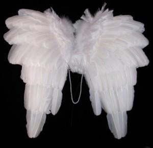 Angel Costume Wings