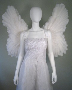Angel Wing Costumes