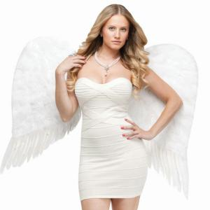 Angel Wings Costume Adults