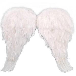 Angel Wings Costume Kids