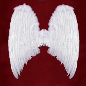 Angel Wings Costume for Men