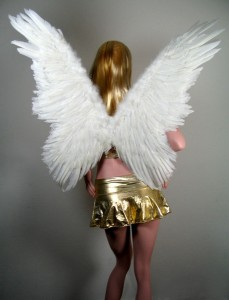 Angel Wings Costume for Women