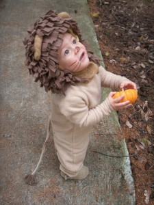 Baby Lion Costume Pattern