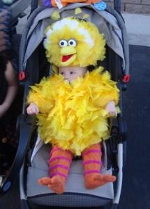 Big Bird Infant Costume