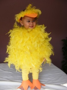Duck Costume Pattern