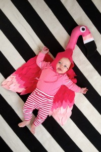 Infant Flamingo Costume