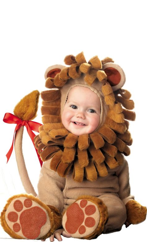 Baby lion costume - photo#21  sc 1 st  Animalia Life : halloween costumes for babies uk  - Germanpascual.Com