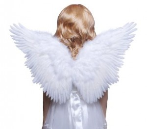 White Angel Wings Costume