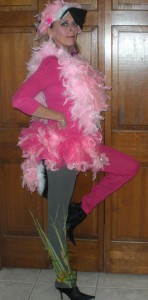 Womens Flamingo Costume