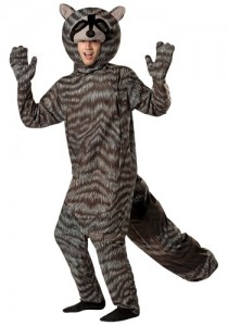 Raccoon Costume Men
