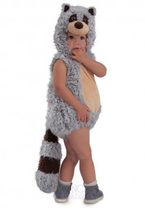 Raccoon Costume Toddler