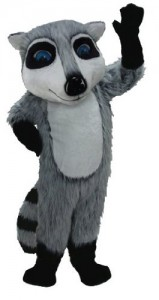 Raccoon Costumes for Kids