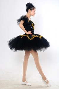 Adult Ballet Costume