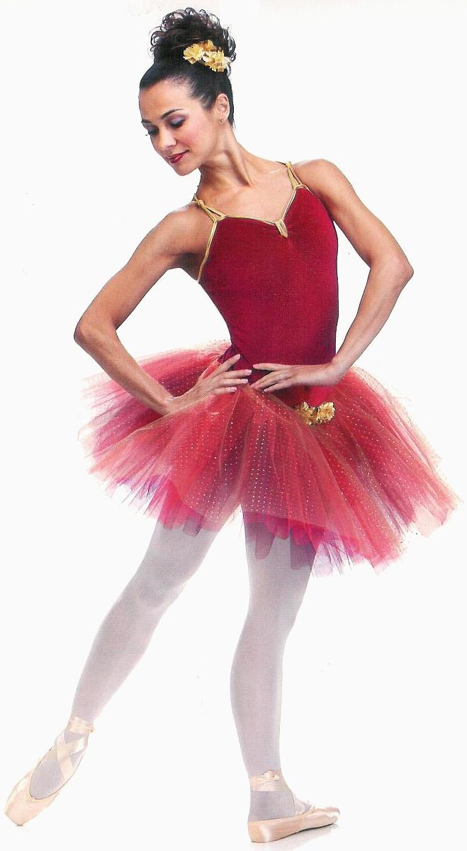 Ballet Costume  sc 1 st  Parties Costume : ballerina costume for men  - Germanpascual.Com