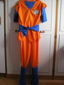 Dragon Ball Z Costumes Goku