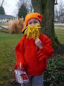 Homemade Dr Seuss Costumes