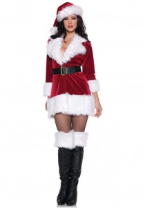 Mrs Clause Costumes