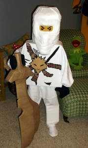 Ninjago Costume Zane