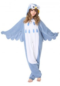 Owl Costume Adult