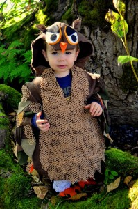 Owl Costume for Kids
