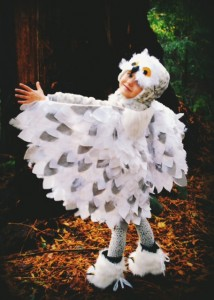 Owl Wings Costume