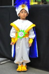 Prince Ali Costume