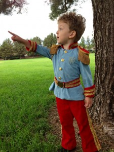 Prince Charming Toddler Costume