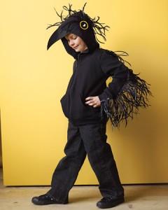 Raven Bird Costume